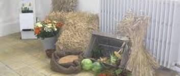 Høstgudstjeneste og frokost